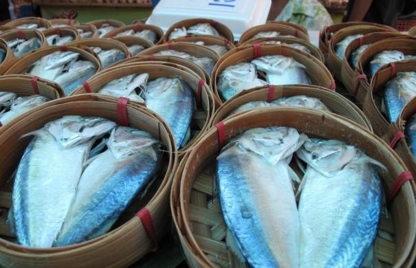10 ปลาไทยราคาบ้านๆ โอเมก้า 3 สูง