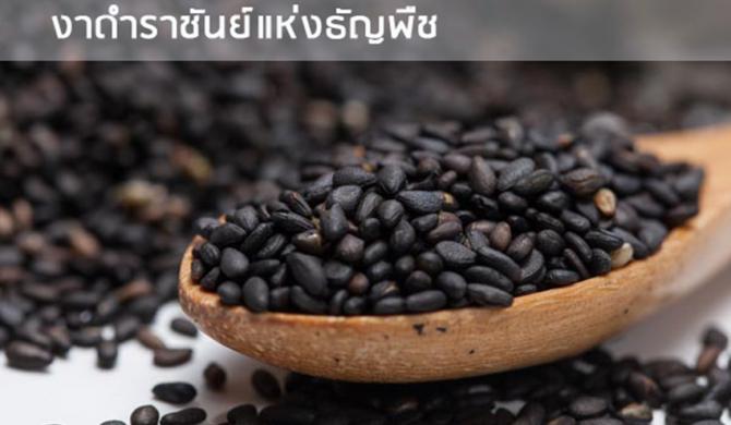 11 ประโยชน์ของงาดำ คุณค่าล้นเมล็ด ซูเปอร์ฟู้ดเพื่อสุขภาพ