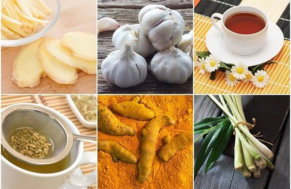 12 สมุนไพรช่วยย่อยอาหาร ปราบอาการแน่นท้อง คืนความสุขให้กระเพาะ